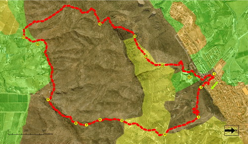 ruta ornitologica guadalhorce