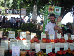 mercadillo guadalhorce