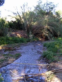rio fahala