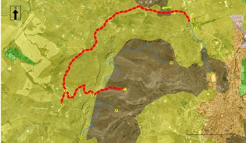 ruta ornitológica guadalhorce