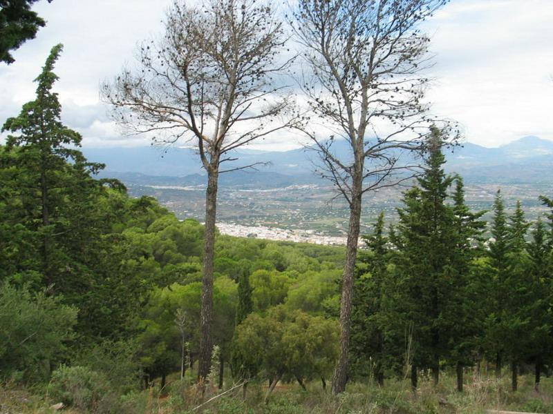 Vistas de Alhaurín